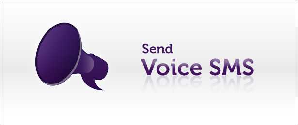 Voice-Sms-Service-Provider